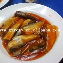 ingrosso carne halal nomi di pesci sardine in scatola in salsa di pomodoro