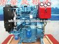30hp dos weifang motor diesel del cilindro