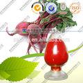 natural del pigmento rojo de remolacha extracto de la raíz