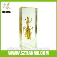 Plastic specimen embedment grasshopper