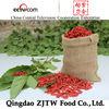 Hot Sale Dried Fruit Import Goji Berries