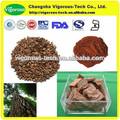 Antioxidante pine bark extract / pinus massoniana extrato em pó / casca de pinheiro 95% OPC extrato