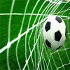 Good Quality Fifa Landscaping Soccer Fake/Football Sports Pitch Synthetic Grass Lawn/Football Artificial Turf