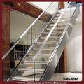 تصاميم الدرج درابزين الزجاج مغطى لوحة