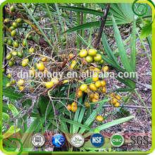 USD13.5/KG,saw palmetto berry extract , Saw Palmetto P.E.(25%,45% Fatty acids)