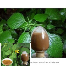 Best sale high quality Nettle P.E.