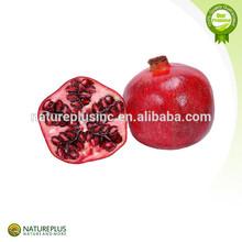 Anti-cancer Pomegranate Extract/Pomegranate Peel Extract