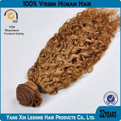 Wholesale 100% Human Virgin Natural Brazilian Honey Blonde Curly Weave Hair