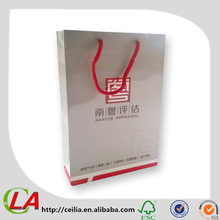 Factory Made Glossy Art Paper Promotional Paper Bag