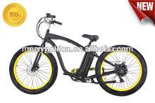500W cheap motor Durable E bike