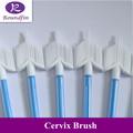 Cepillo de cuello uterino, médicos y cepillo de limpieza