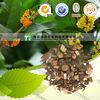 Cinnamomum cassia Presl, Ramulus Cinnamomi, CassiaTwig