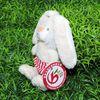 green stuffed plush bunny rabbit toy