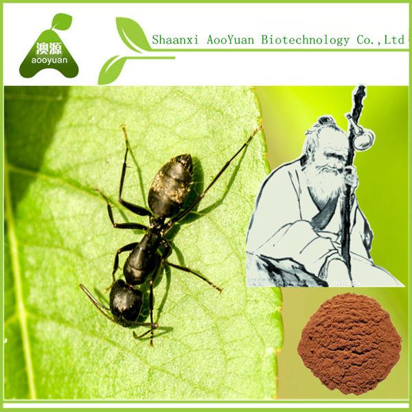 Polyrachisมดสารสกัด, สารสกัดจากอัตราส่วน15: 0110: 0120: 015:1,สต็อกสด; ผู้ผลิตมืออาชีพ