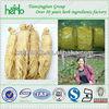 Pure Organic Wholesale Ginsenoside 10% Panax Ginseng Root Extract