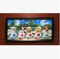 3D picture/3D painting/3D printing/3D models/3d picture of dog