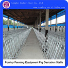 Poultry Farming Equipment Pig Gestation Stalls