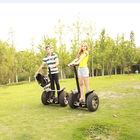 2014 CHIC- GOLF golf cart frame