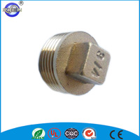 copper brass color male female pipe plug