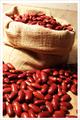 la nueva cosecha de largo forma de color rojo judíasverdes
