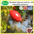 5%- 10% vitamina c; 5% polifenóis extrato de rose hip/subiu quadril p. E e./rosa mosqueta pó