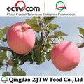royal gala apple china