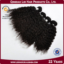 High Quality Products Afro Kinky Curly Virgin Hair