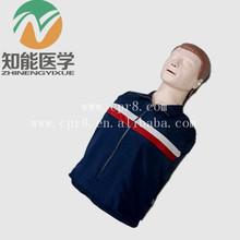 Bix/cpr100b Hälfte- Körper hlw-trainingsmodell/Half Körper erwachsener hlw-puppe