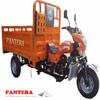 PT250ZH-9 Good Quality New Model Chongqing Popular 250cc Road Warrior Trike
