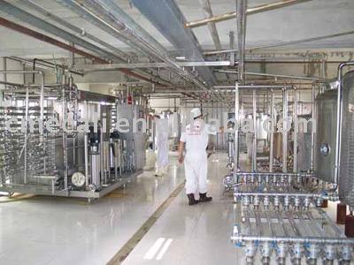 proceso de leche y productos lácteos de la línea de producción