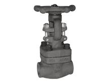 Forged steel threaded end Globe Valve gate valve swing check valve 800lb 1500lb