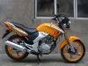 150cc Street Motorcycle/WJ-SUZUKI Engine/Motorcycle WJ150-15(V)