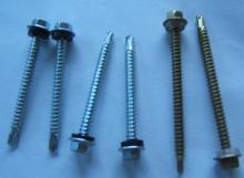 hex washer head self drilling screw /HEH HEAD screw