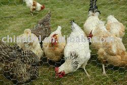 chicken wire ,gabion box,stone wire mesh animal cage