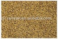 Zhejiang Janson-dehydrate-Cumin Seeds