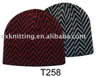 Fashion hat / Fashion cap / Fashion beanie