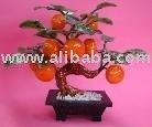 mandarina de jade de la planta