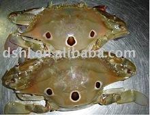 Frozen Whole Crab
