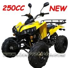 EEC 250CC ATV.EEC 250CC QUAD EEC 250CC ATV QUAD