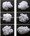 Coton fiber, Soie, Laine