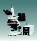 Fluorescent Microscope, EPI-Fluorescent Attachment, (XS-402) Fluorescence Microscope
