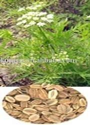 Cnidium Monnieri Extract Osthole 80% HPLC (manufacturer)