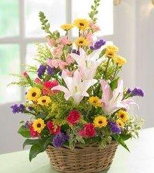 http://i01.i.aliimg.com/photo/v0/241302181/birthday_flower_Spring_Basket.jpg