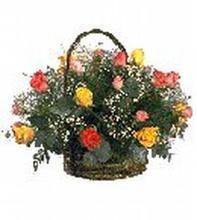 Rainbow rose basket
