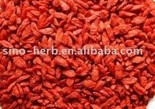 Goji extract,herb medicine