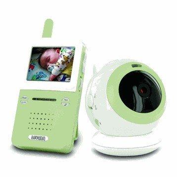 Wireless Camera Surveillance System
