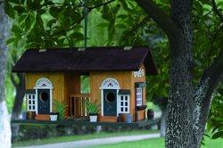 bird house/ bird feeder