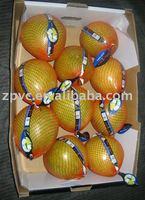 Fresh Pomelo(Honey pomelo,Chinese pomelo, W-001)