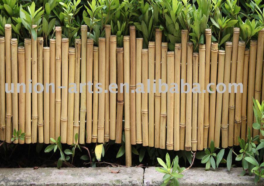 bambú esgrima