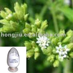 Stevia rebaudiana extract